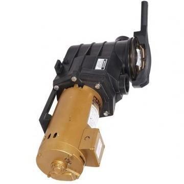 Vickers PV020R1E1BCNMFC+PV020R1E1T1NMM PV 196 pompe à piston
