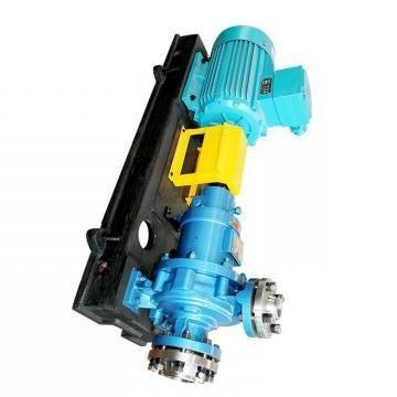 Vickers PV016R1K1T1NELZ+PVAC1ECMNSJW35 PV 196 pompe à piston