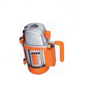Vickers PV016R1D3T1NUPR4545 PV 196 pompe à piston