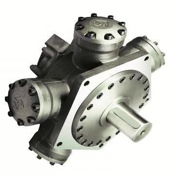 Vickers PV016R1K1AYNMFC+PGP511A0140CA1 PV 196 pompe à piston