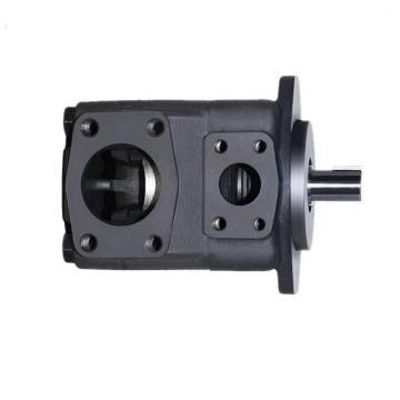 Vickers PVXS-066 PVXS pompe à piston
