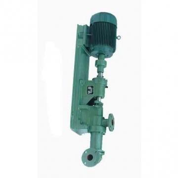 Vickers PV020L1K1T1NFWS PV pompe à piston