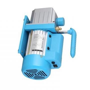Vickers PVXS-180 PVXS pompe à piston
