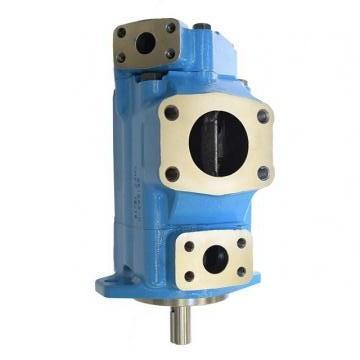 Vickers PV016R1K1T1WMR14545 PV 196 pompe à piston