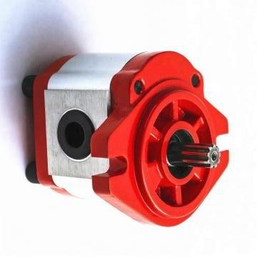 Hengyuan 32SCY14-1B CY pompe à piston