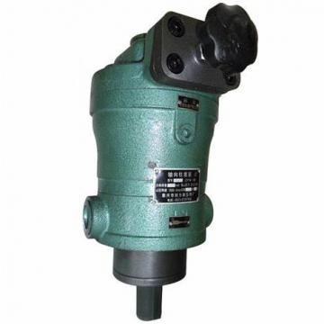 Hengyuan 10YCY14-1B CY pompe à piston