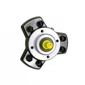 Vickers PV020R1K1AYNMMC+PGP505A0040CA1 PV 196 pompe à piston
